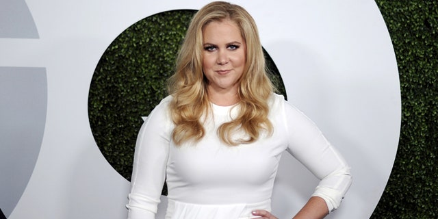 Comedian Amy Schumer poses during the GQ Men of the Year party in West Hollywood, California December 3, 2015. Picture taken December 3, 2015. REUTERS/Kevork Djansezian - RTX1X56A