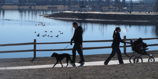 Jan. 15, 2014: Joggers and dog-walkers make their way around the Sparks Marina, Wednesday, where wildlife biologists are trying to figure out what caused the kill-off the man-made lake's entire stocked fishery -- an estimated 100,000 trout, bass and catfish.