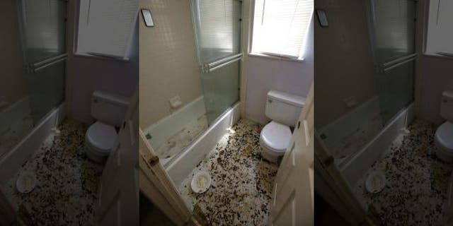 The bathroom is strewn with feces at a home in Fairfield, Calif., Monday, May 14, 2018, where authorities removed 10 children and charged their father with torture and their mother with neglect after an investigation revealed a lengthy period of severe physical and emotional abuse.