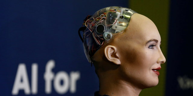 """File photo - Sophia, a robot integrating the latest technologies and artificial intelligence developed by Hanson Robotics is pictured during a presentation at the """"AI for Good"""" Global Summit at the International Telecommunication Union (ITU) in Geneva, Switzerland June 7, 2017. (REUTERS/Denis Balibouse)"""