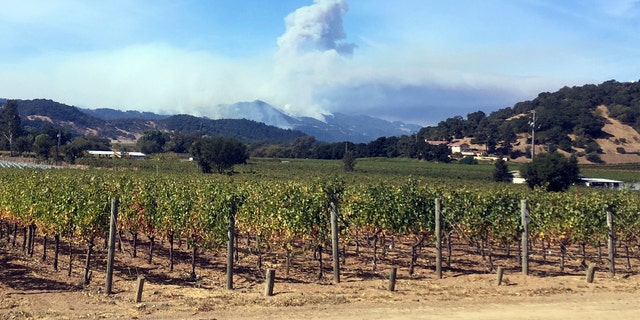 The wine industry can be affected by wildfires in California.