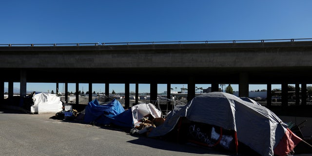 A large homeless encampment along the Santa Ana River Trail in Anaheim.