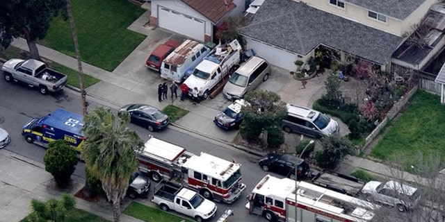 A tree trimmer was electrocuted in San Jose on Monday, fire officials said.