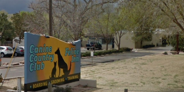 An animal volunteer in Arizona was allegedly killed during a dog attack at the Canine Country Club & Feline Inn, reports said.
