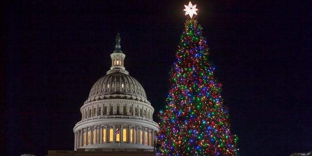 The Capitol Christmas tree is illuminated in Washington, Tuesday, Dec. 19, 2017.