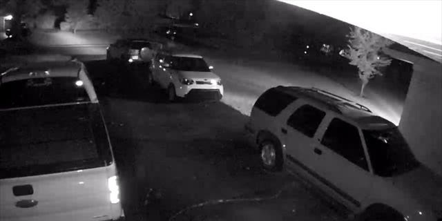 Security camera footage caught the thieves driving off in the Greens' Toyota Rav-4.