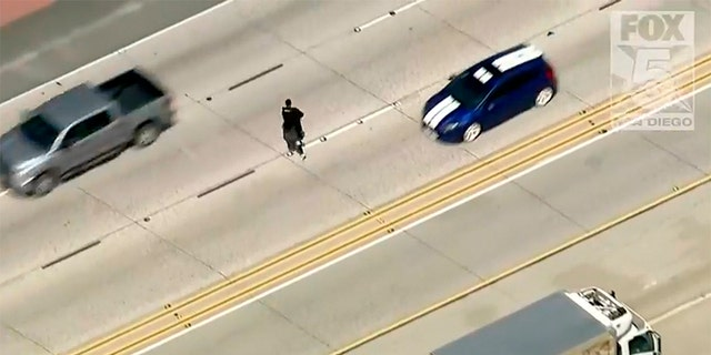 The truck eventually stopped in the middle of the freeway and the man driving the stolen vehicle got out, jumped the center divider and ran across five lanes of traffic.