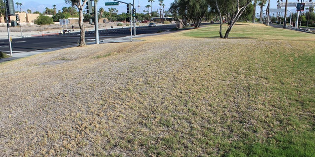 Known as California's Desert Oasis, the city's once lush green grass is now a moribund yellow and brown. Certain fountains that flowed for decades with endless streams of water have been shut off.