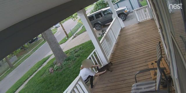 Image from security video showing a catnapper trying to swipe Mo, an 8-year-old tiger-striped tabby in Lincoln, Neb., last week.