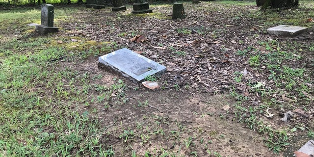 The remains of Elbert Williams are believed to be buried in an unmarked grave in a historically black cemetery in Haywood County, Tenn. A forensic team from the University of Tennesse Knoxville will begin a search for his remains this year.