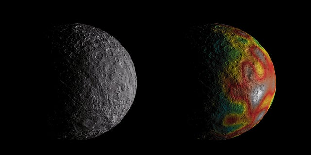 This still of Ceres from a NASA animation based on data from the Dawn spacecraft in orbit shows the dwarf planet (and largest asteroid) as it appears to the probe (left) and with a gravity-field map overlaid in false color. Red areas indicate regions where gravity is stronger on Ceres, while blue denotes a weaker gravity field.