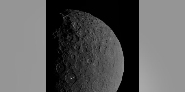 """This view of the dwarf planet Ceres shows the mountain and likely """"ice volcano"""" Ahuna Mons on the right edge and the bright spots of the Occator crater in the bottom left. New research suggests that multiple ice volcanoes once dotted Ceres' surface. (Credit: NASA/JPL-Caltech/UCLA/MPS/DLR/IDA)"""