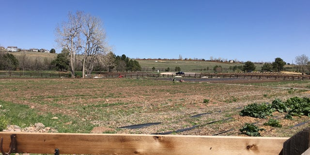 A portion of Chatfield Farms at Denver Botanic Gardens where Veterans to Farmers participants learn agriculture skills.