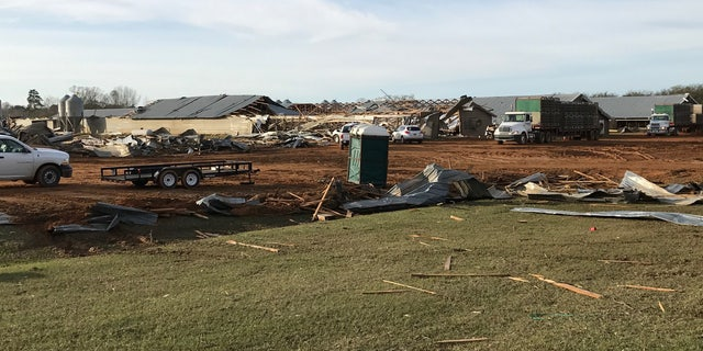 A row of chicken houses in Mount Olive, Miss. were severely damaged by the storms.
