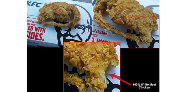 Kfc Says Dna Shows Fried Rat Was Chicken Fox News