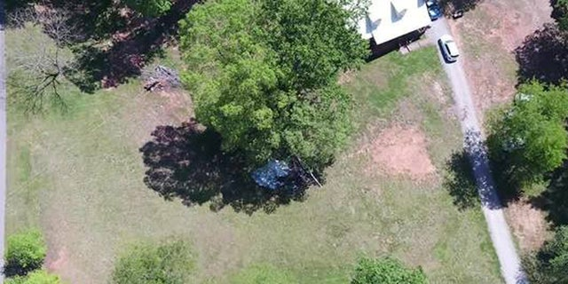The FAA said the helicopter's tail hit a tree before it spiraled out of control and crashed.