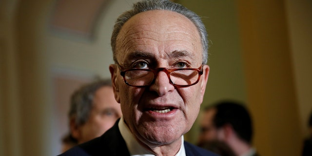 Senate Minority Leader Chuck Schumer (D-NY) speaks to reporters on Capitol Hill in Washington, U.S., January 30, 2018.