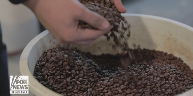 If you don't start with freshly roasted beans, you're off to a bad start, says Nieto.
