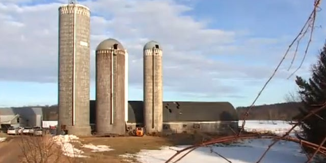 The collapse in the grain silo at the dairy farm in Hillsdale, Wis., happened Saturday.