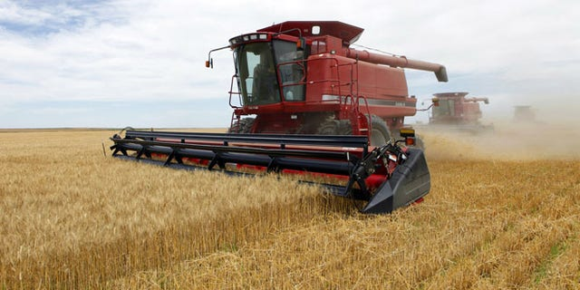 The North American Islamic Trust, despite receiving farm subsidies, was not doing what is pictured here -- harvesting crops.