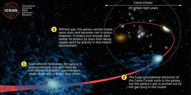 "This graphic depicts the ""quenching"" process, showing how a normal star-forming galaxy (in blue), loses its gas while falling into the Coma galaxy cluster."