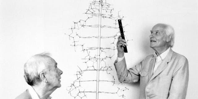 Francis Crick and James Watson recreate their demonstration of the double helix model for DNA in 1990.