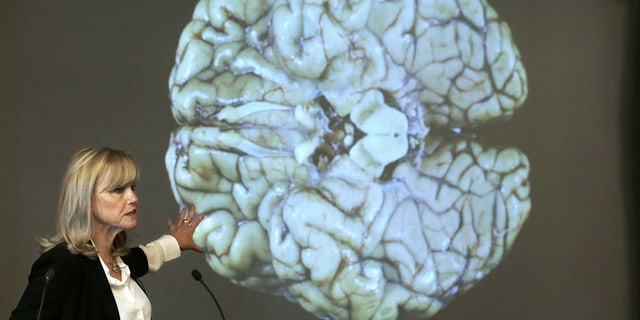 Ann McKee, director Boston University's center for research into the degenerative brain disease chronic traumatic encephalopathy, or CTE, addresses an audience on the school's campus Thursday, Nov. 9, 2017 about the study of NFL football player Aaron Hernandez's brain, projected on a screen behind, in Boston.