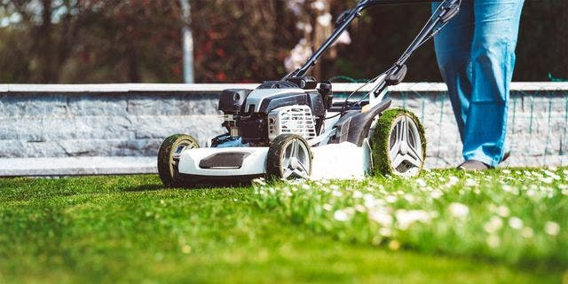 Are you mowing your lawn wrong? Follow these tips for optimal lawn maintenance.