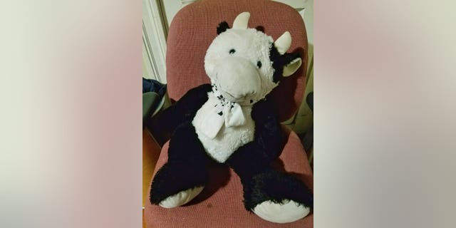 The stuffed cow broke the fall for the Massachusetts toddler, creating a cushion between the boy and the concrete, police said. (Chelsea Police Chief Brian Kyes)