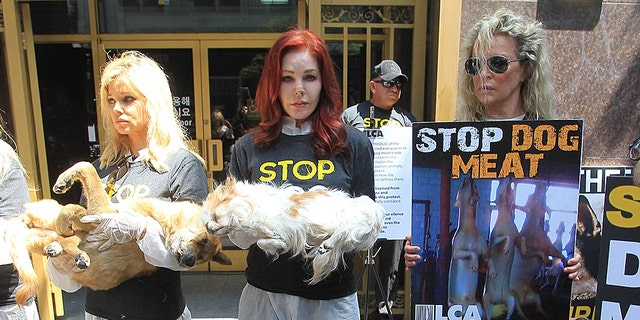 Donna D'Errico, Priscilla Presley and actress Kim Basinger protest dog meat in Los Angeles.