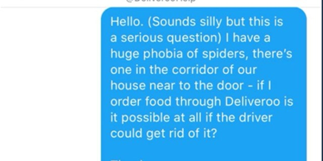 Sweeney then messaged Deliveroo customer service to see if her spider-killing needs could be met.