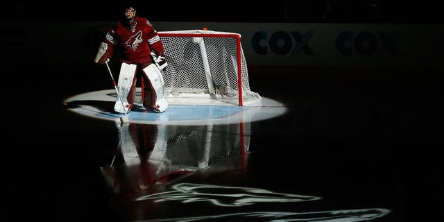 GLENDALE, AZ - FEBRUARY 07: Goaltender Mike Smith #41 of the Arizona Coyotes is introduced before the NHL game against the Detroit Red Wings at Gila River Arena on February 7, 2015 in Glendale, Arizona. (Photo by Christian Petersen/Getty Images)