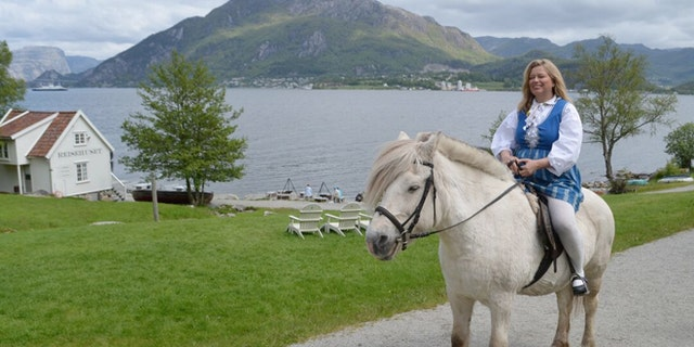 Fjord horse at Bakernes Paradis on the Lysefjord near Stavanger, Norway.