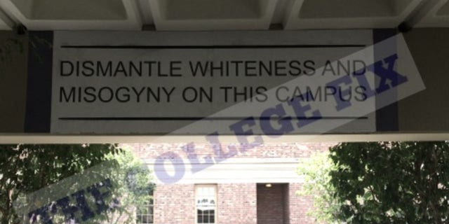 "The University of Southern California installed a ""dismantle whiteness"" mural stirring up controversy on campus."