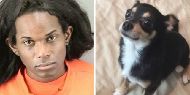 Wakeen Best, 34, was found guilty Friday of killing a Chihuahua, which was inside of the car she broke into, and throwing it from the seventh floor of a parking garage.