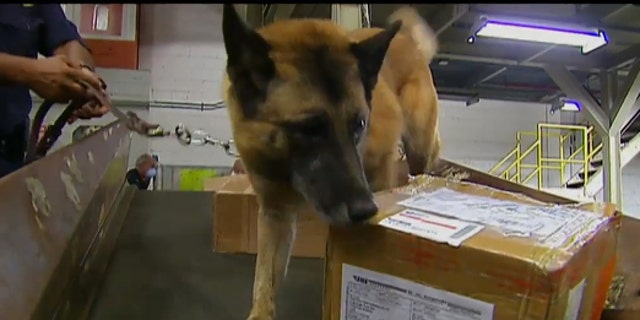 Agents use drug-sniffing dogs, X-rays and hand-held laser detectors to examine every piece of mail that goes through the international mail facility, where 60 percent of the nation's postage arrives.