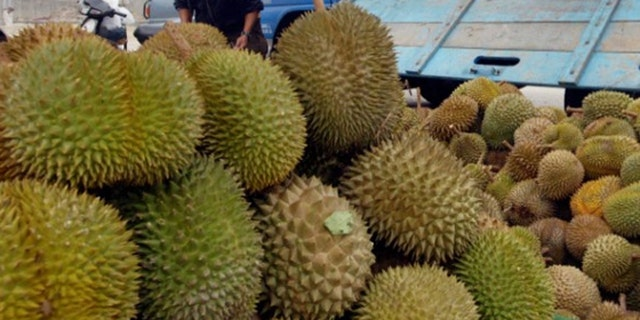 Durian caused hundreds of people to evacuate from the University of Canberra's library on Thursday, the school said.
