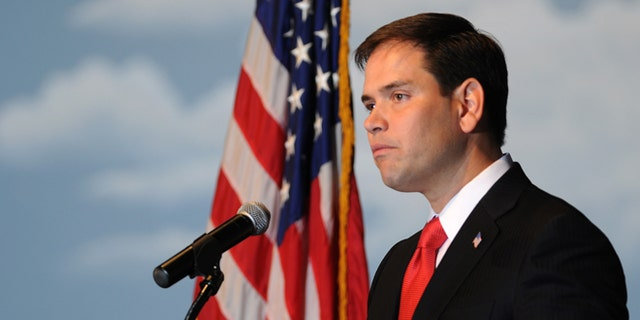 ALTOONA, IA - NOVEMBER 17:  U.S. Sen. Marco Rubio (R-FL) speaks at a combination fundraiser and birthday party for Iowa Gov. Terry Branstad, on November 17, 2012 in Altoona, Iowa. Branstad turned 65 this year. (Photo by Steve Pope/Getty Images)