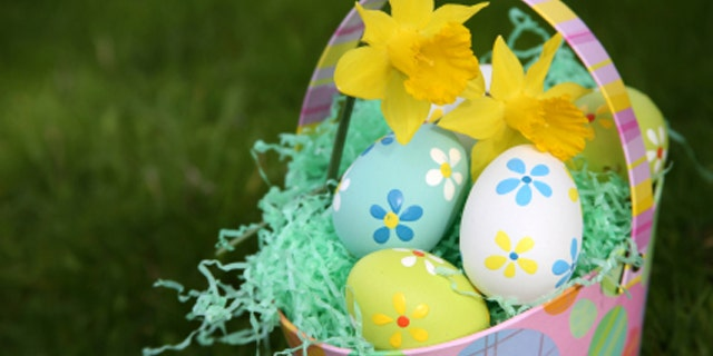 Colorful Easter Eggs in Grass with Basket with Daffodils