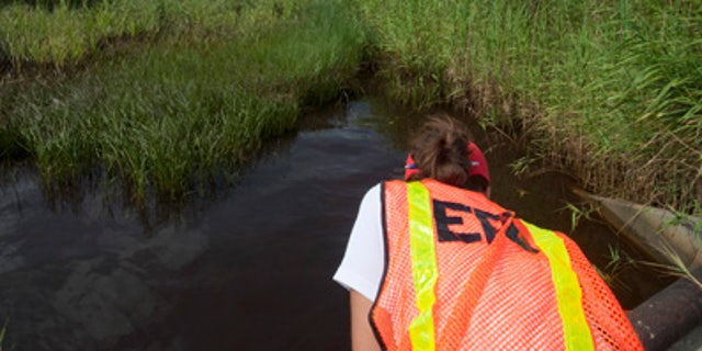 A U.S. Environmental Protection Agency (EPA) worker looks at oil from the Deepwater Horizon spill which seeped into a marsh in Waveland, Mississippi July 7, 2010.