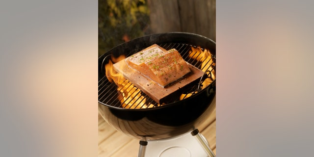 Raw Cedar Plank Salmon Filets on an outdoor BBQ -Photographed on Hasselblad H3D2-39mb Camera[url=http://www.istockphoto.com/user_view.php?id=4359053][IMG]http://i915.photobucket.com/albums/ac352/lauripat/iStock/lightboxes_4b.jpg[/IMG][/url]