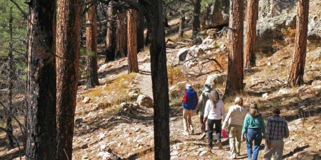Exploring the Cliff Springs Trail at Grand Canyon National Park.