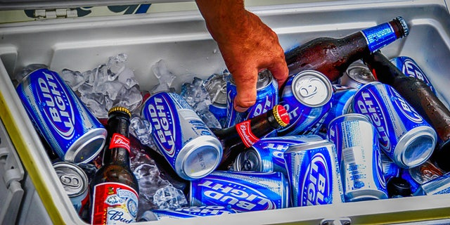 POrt Huron, MI, USA - July 14, 2006: A hand reaches into a cooler box to retrieve a can and bottle of Budweiser Light beer at the Port Huron Sailing regatta in Michigan