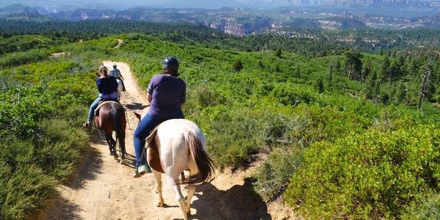 Happy trails at Zion Ponderosa Ranch Resort.
