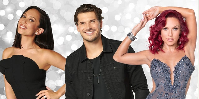 """The pro dancers of the iconic """"Dancing With the Stars"""" series reveal the new cast for the show's 27th season."""