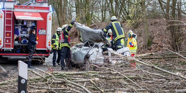 Rescue workers are busy at the site where a car was hit by a falling tree during a storm in Moers, western Germany, Thursday, Jan. 18, 2018.