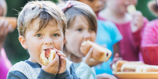 A little boy, 4 years old, eating a hotdog at a picnic.  His mouth is full as he takes a bite.  He is wearing a gray shirt with blue sleeves. Standing behind him are other children eating hotdogs.