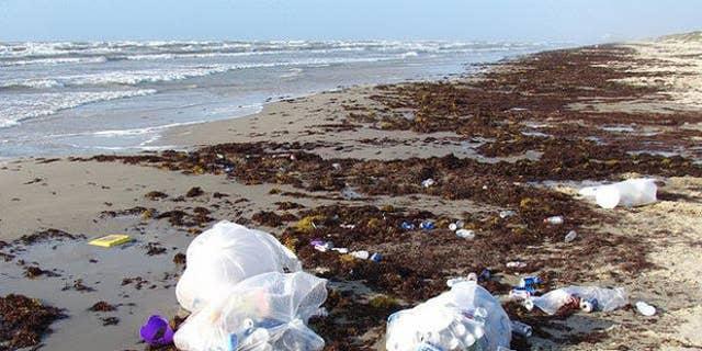 Avoid the trash-strewn beach at Ropes Park.