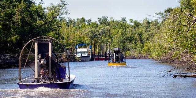 Airboats ride the River near Everglades City, Florida