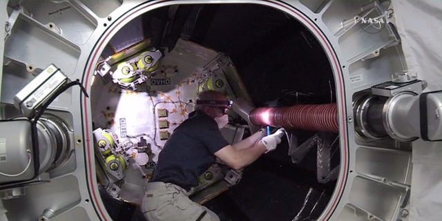 Astronaut Jeff Williams inside BEAM.